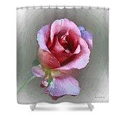 Silk And Satin Shower Curtain