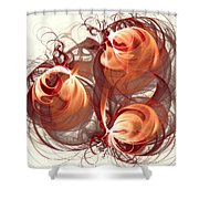Silk Labyrinth Shower Curtain