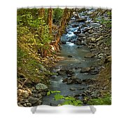 Silky Stream In Rain Forest Landscape Art Prints Shower Curtain