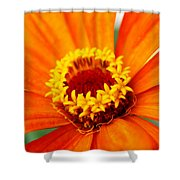 Silky Petal Shower Curtain