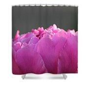 Silky Pink Petals Shower Curtain