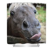 Silly Horse Shower Curtain