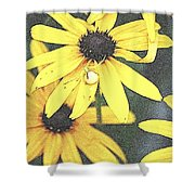 Silly Susans Spider Shower Curtain