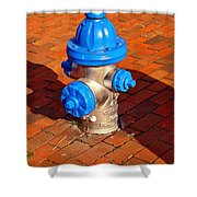 Silver And Blue Hydrant Shower Curtain