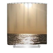 Silver And Gold Shower Curtain
