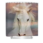 Silver Boy Shower Curtain