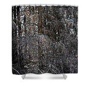 Silver Cedar Shower Curtain