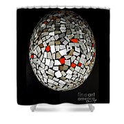 Silver Egg Shower Curtain by Eleni Mac Synodinos