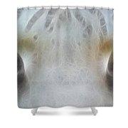 Silver Eyes 7943-fractal Shower Curtain