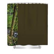Silver Falls Oregon Shower Curtain