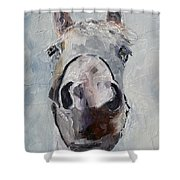 Silver Girl Shower Curtain