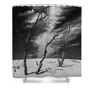 Silver Lake Dune With Dead Trees And Cirrus Clouds In Black And White Shower Curtain