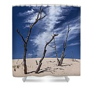 Silver Lake Dune With Dead Trees And Cirrus Clouds Shower Curtain