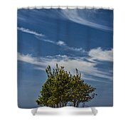 Silver Lake Dune With Tree Grove And Cirrus Clouds Shower Curtain