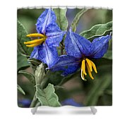 Silver Leaf Blooms Shower Curtain