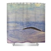 Silver Moon  Shower Curtain