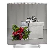 Silver Present Shower Curtain
