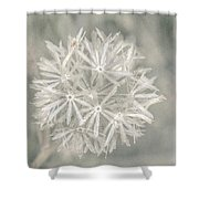 Silver Puff Shower Curtain