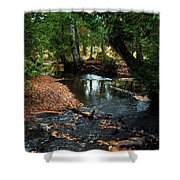 Silver River Channel In Autumn Shower Curtain