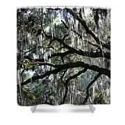 Silver Savannah Tree Shower Curtain