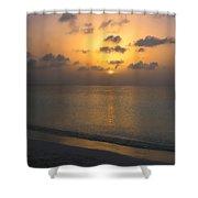 Silver Sea Shower Curtain