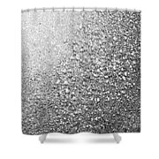 Silver Speckles  Shower Curtain