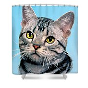 Silver Tabby Kitten Original Painting For Sale Shower Curtain