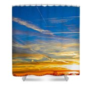 Silver Wing Sunset Shower Curtain