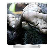 Silverback Grooming 2 Shower Curtain