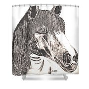Silverboy Shower Curtain