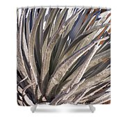 Silversword Detail Shower Curtain