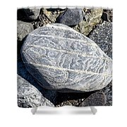 Beautifully Patterned Rock On The Beach In Alaska Shower Curtain