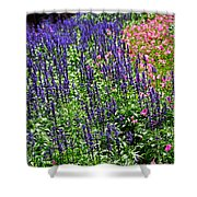 Simple Beauty - Purple And Pink Shower Curtain