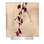 Simple Branch Shower Curtain