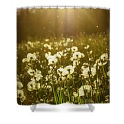 Simple Dreams Shower Curtain