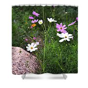 Simple Flowers 11460 Shower Curtain