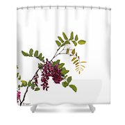 Simple Joy Shower Curtain