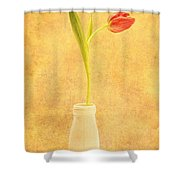 Simplicity -  No Words Shower Curtain