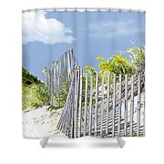Simplified View Of Coastal Dune Shower Curtain
