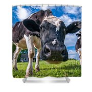 Simply Cows Shower Curtain