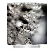 Simply Magic Shower Curtain