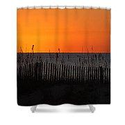 Simply Orange Shower Curtain