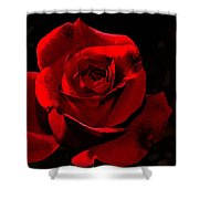 Simply Red Rose Shower Curtain