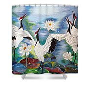 Singing In The Rain Hand Embroidery Shower Curtain by To-Tam Gerwe