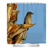 Singing Mockingbird Shower Curtain