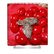 Singing Over Red Eggs Shower Curtain