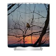 Singing Songs Of Spring Shower Curtain