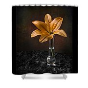 Single Asiatic Lily In Vase Shower Curtain