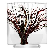 Single Bare Tree Isolated Shower Curtain