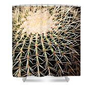 Single Cactus Ball Shower Curtain